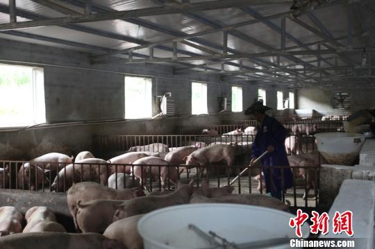 中国光彩事业在凉山:助力贫困户脱贫